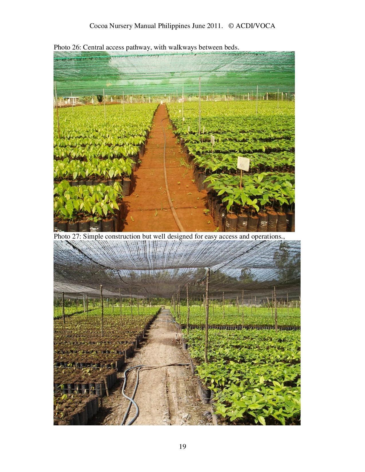 Cocoa-Nursery-Manual-2011_acdi-voca-page-019