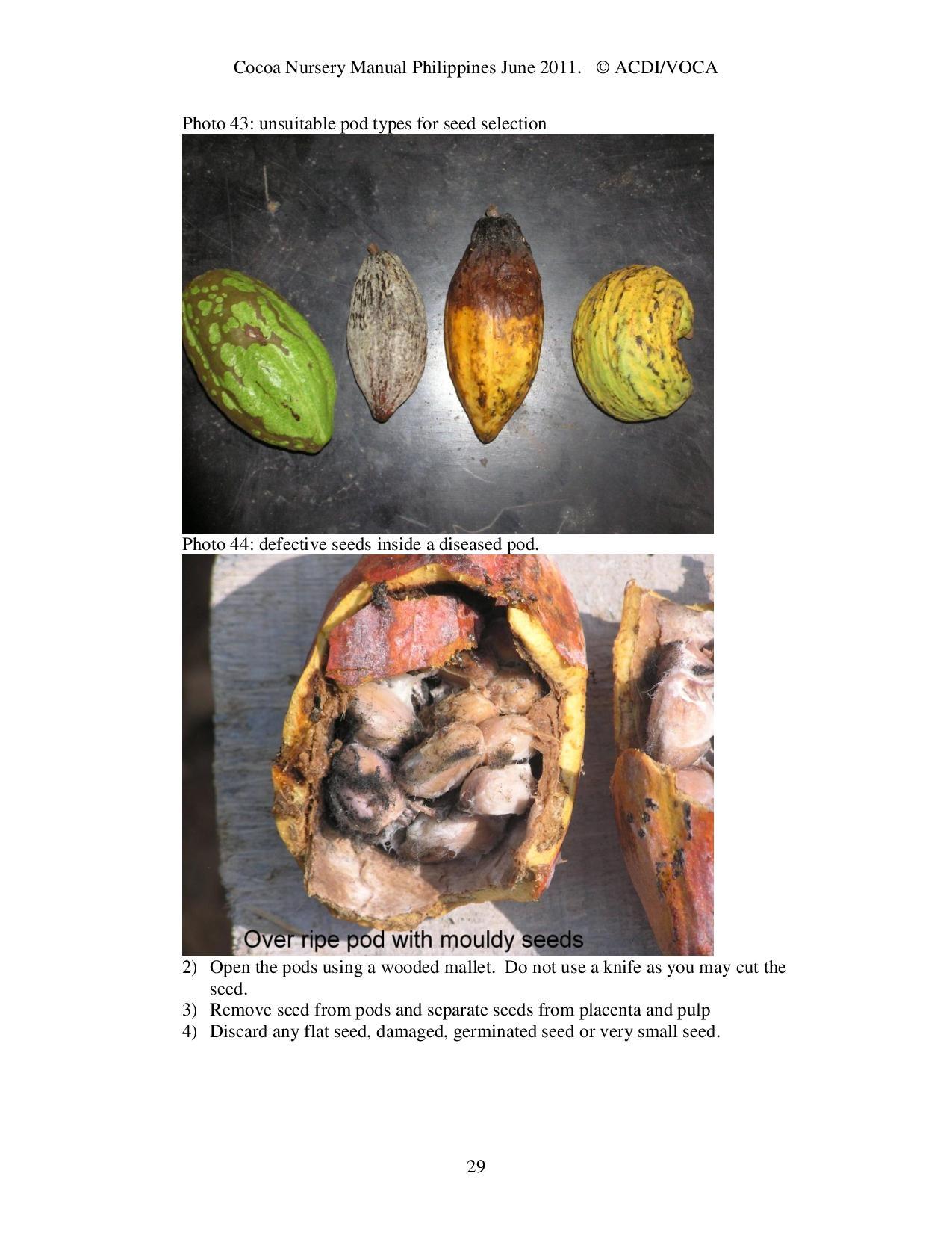Cocoa-Nursery-Manual-2011_acdi-voca-page-029