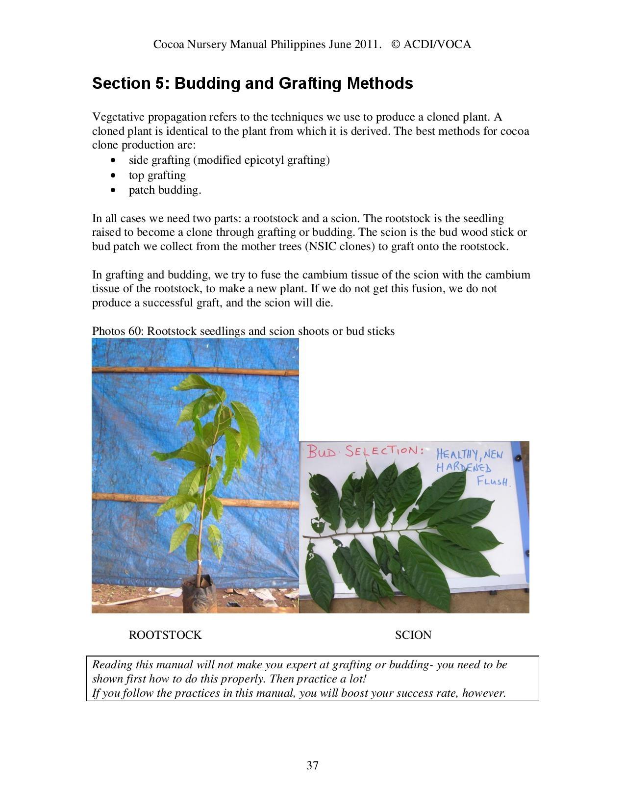 Cocoa-Nursery-Manual-2011_acdi-voca-page-037