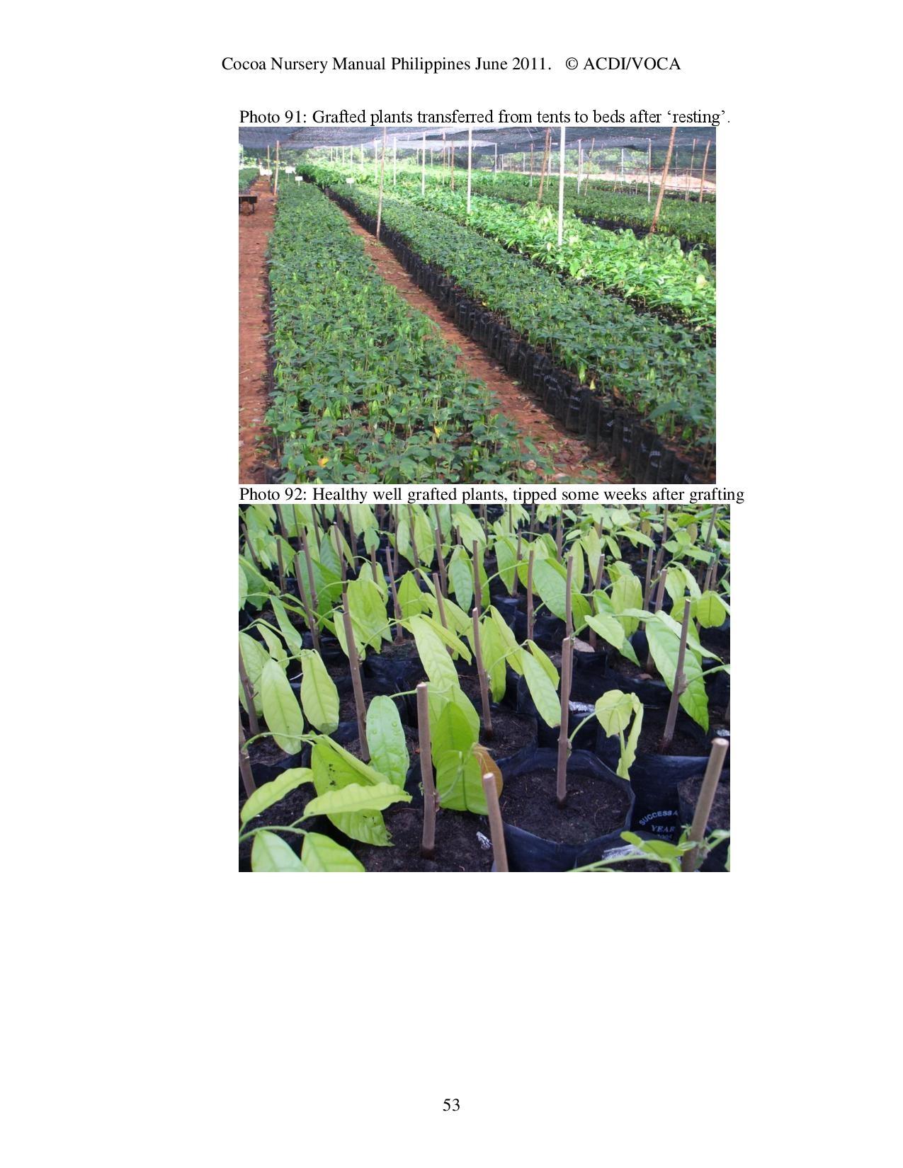 Cocoa-Nursery-Manual-2011_acdi-voca-page-053