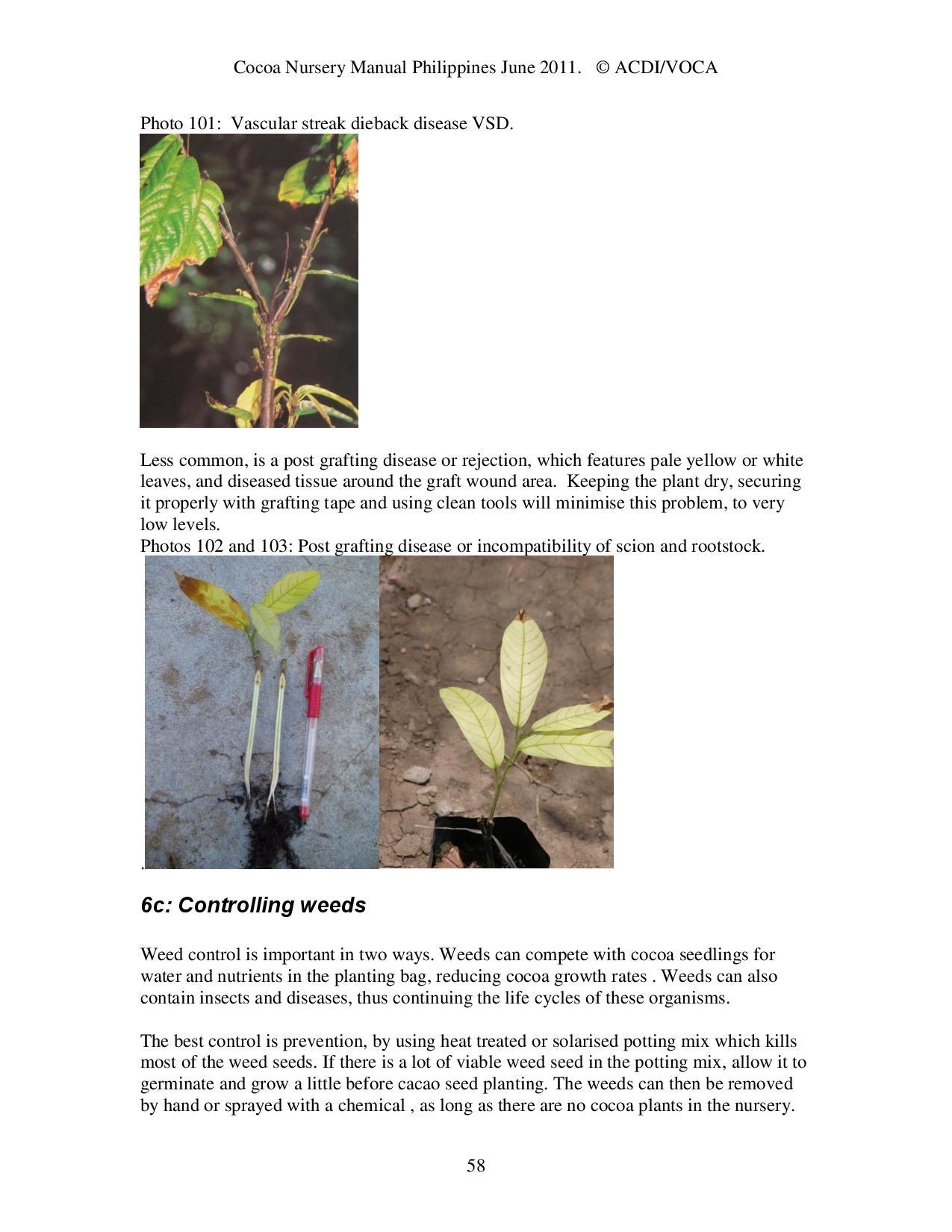 Cocoa-Nursery-Manual-2011_acdi-voca-page-058