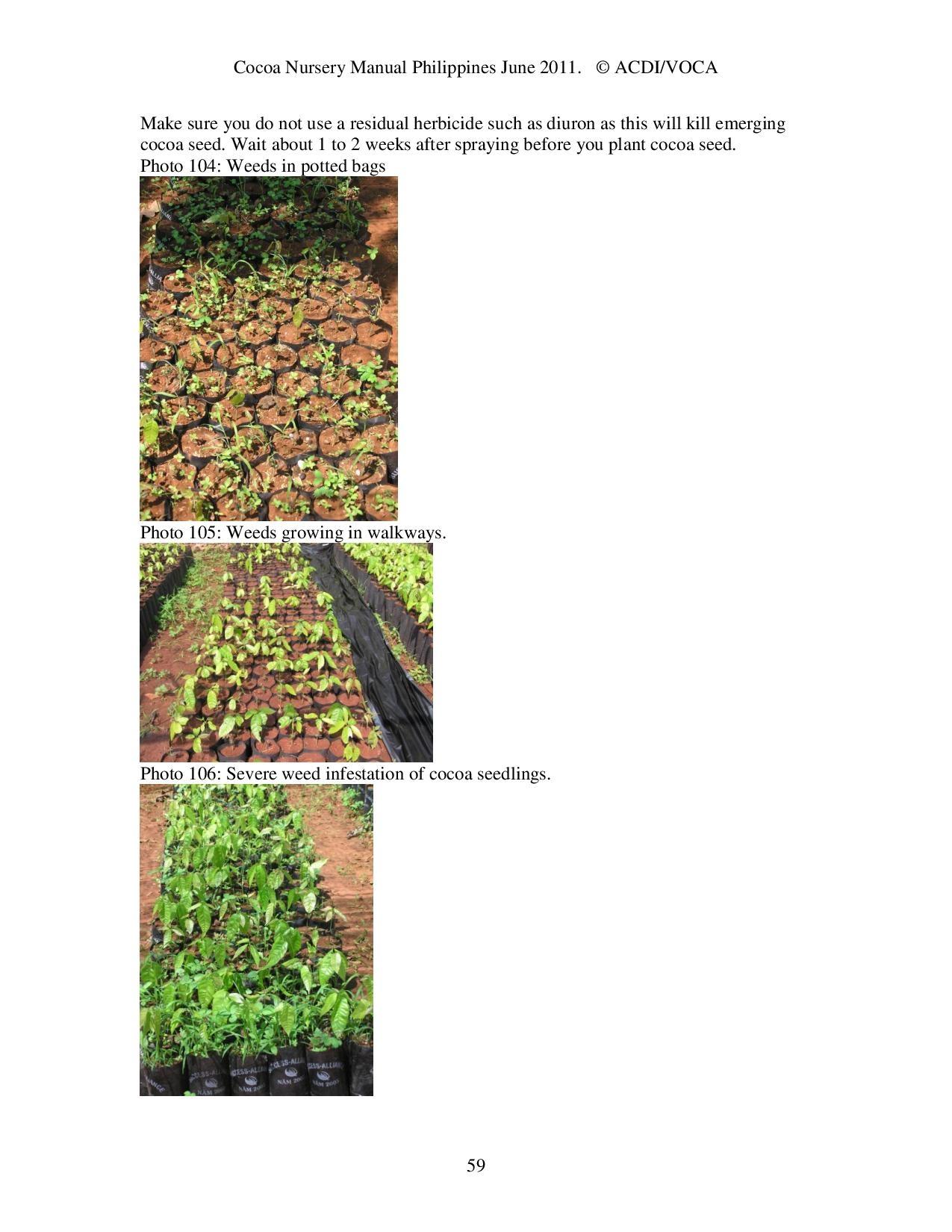 Cocoa-Nursery-Manual-2011_acdi-voca-page-059