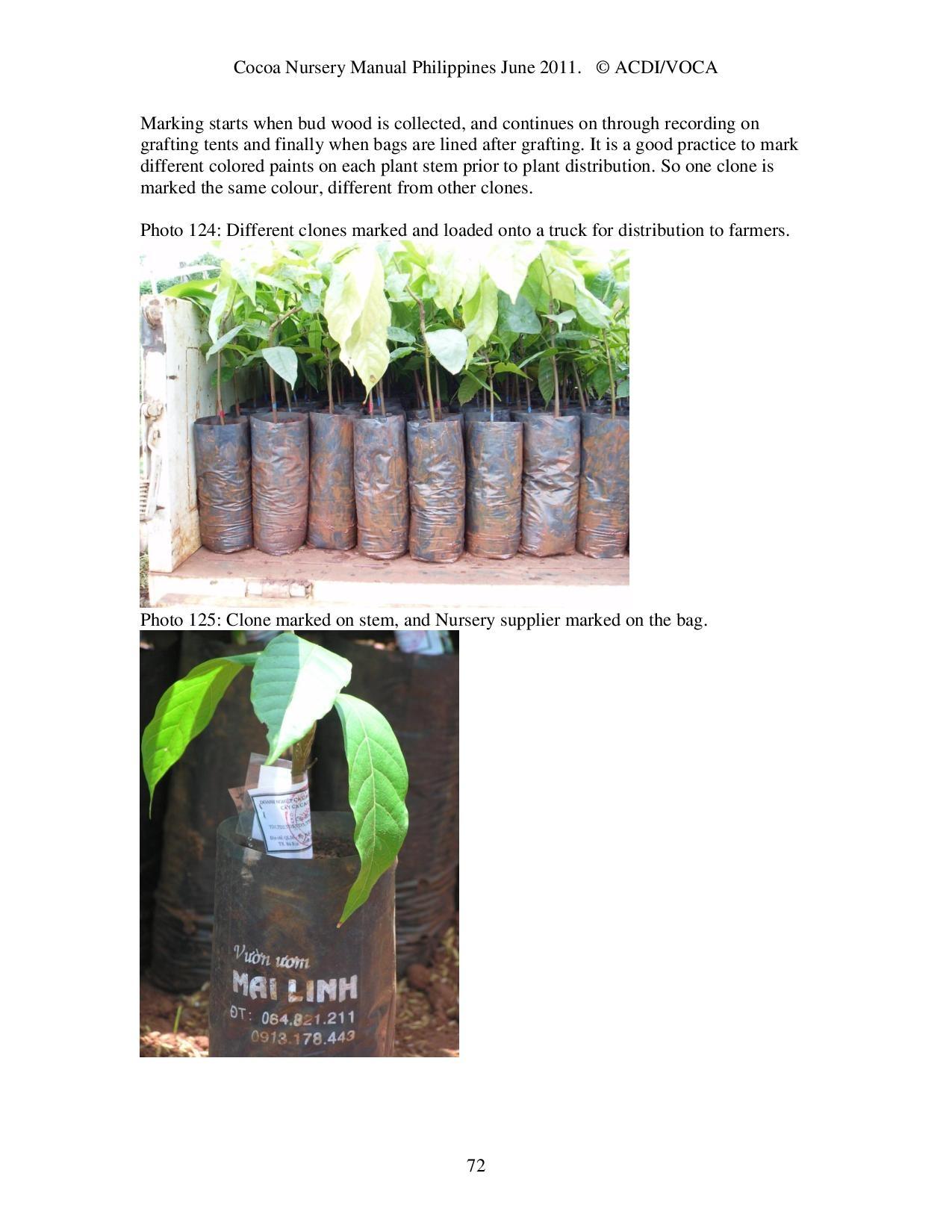 Cocoa-Nursery-Manual-2011_acdi-voca-page-072