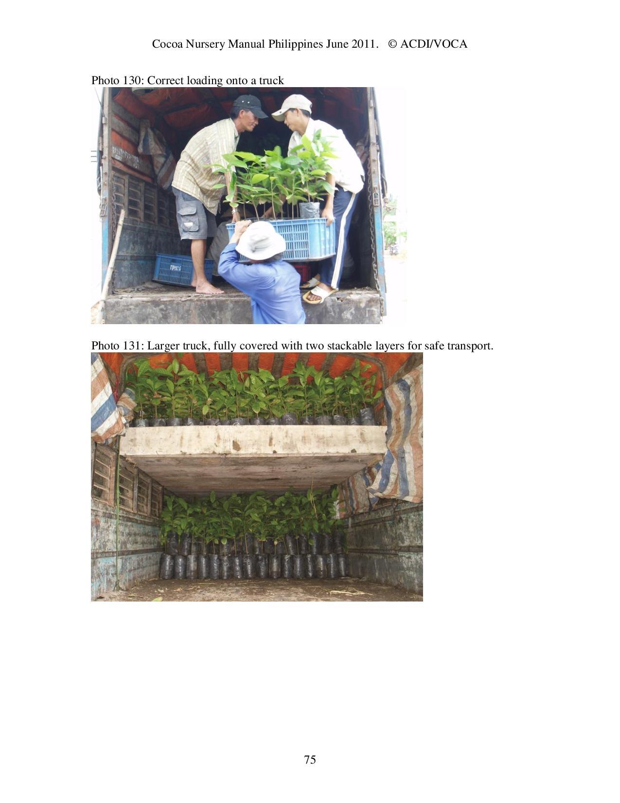Cocoa-Nursery-Manual-2011_acdi-voca-page-075