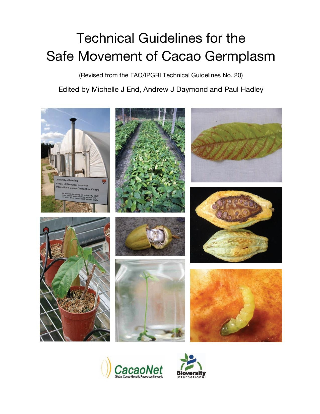Safe_Movement_Cacao (1)-page-001