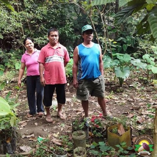 Silay Highlands Cacao Adventure