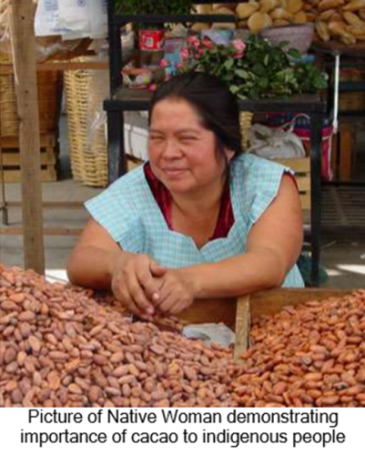 Cacao Production And Environmental Issues In Central America